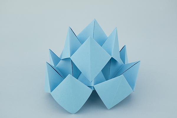 Blue Lotus Origami Photograph by Catherine MacBride