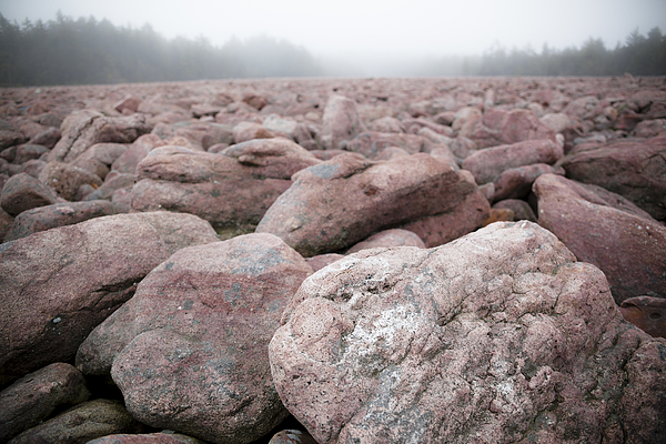 Boulder Field, Natural Phenomenon In Pennsylvania Hickory Run State Park Photograph by Alex Potemkin