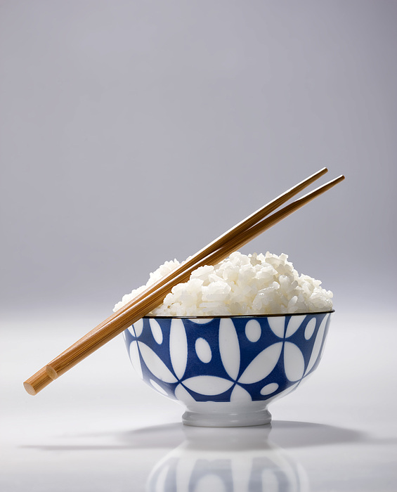 Bowl of Japanese rice Photograph by Tooga