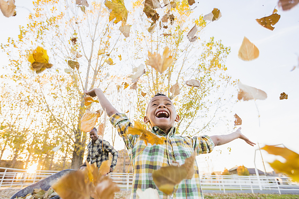 Boy playing in autumn leaves Photograph by Mike Kemp