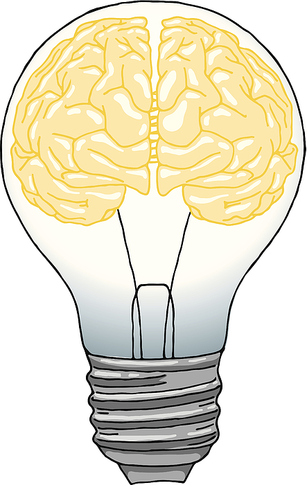 Brain light bulb Drawing by Saemilee