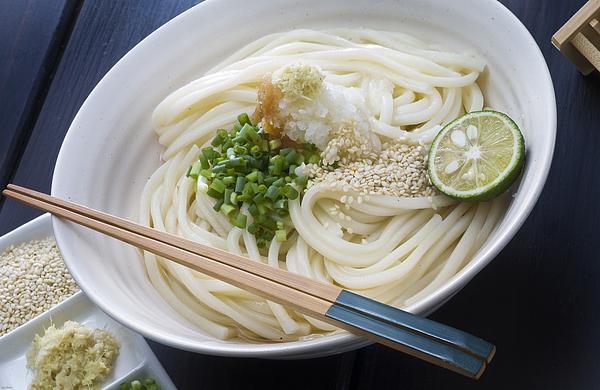 Bukkake Udon Kagawa Prefecture Sanuki / local cuisine Photograph by ~UserGI15702993