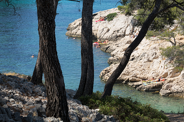 Calanques near Cassis Photograph by Martin Child