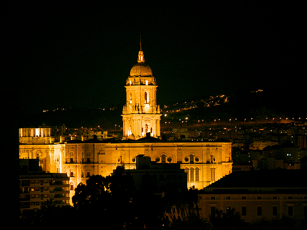 Cathedral at Night in Malaga Photograph by Moelyn Photos