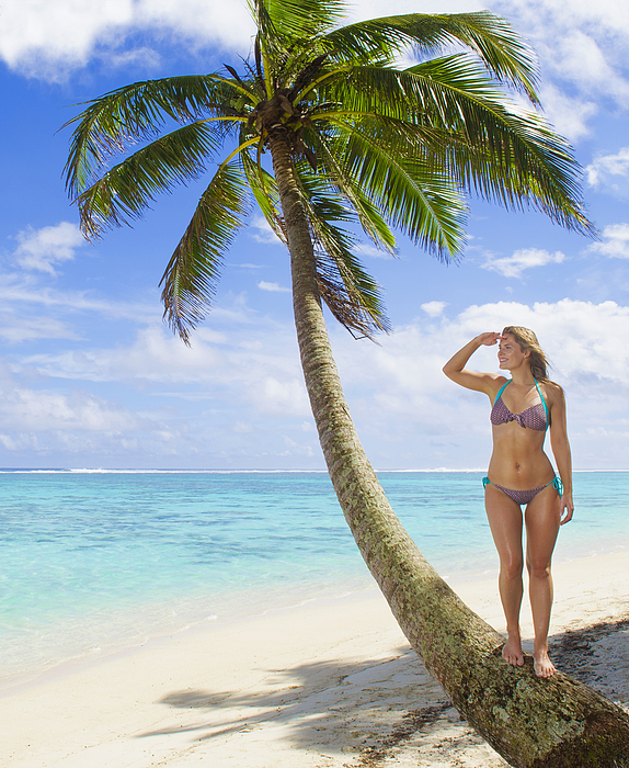Caucasian woman standing on palm tree on tropical beach Photograph by Jacobs Stock Photography Ltd