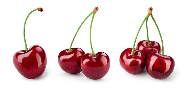Cherry isolated. Cherries on white. Cherry set. With clipping path. Photograph by Taras Dovhych