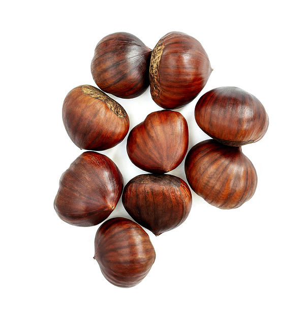 Chestnut Isolated. Roasted sweet chestnuts for Christmas on white background. Food concept. Top view. Flat lay Photograph by Zakharova_Natalia