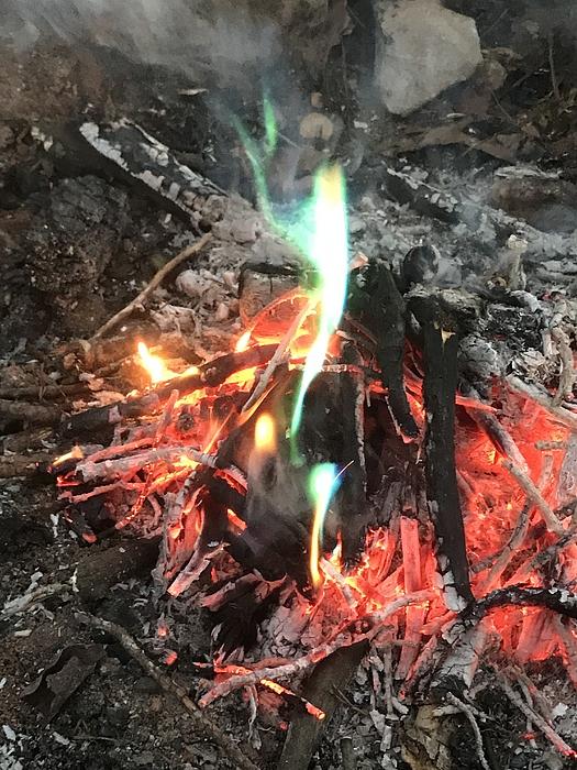 Close-up Of A Bonfire Photograph by Eric R / FOAP
