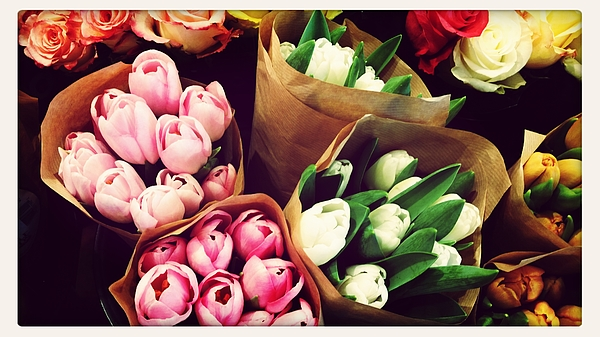 Close Up Of Bouquets Of Tulips And Roses Photograph by Kristine Debus / EyeEm