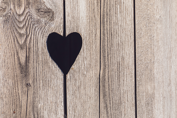 Close-up of heart shape on wooden door. Photograph by Malorny