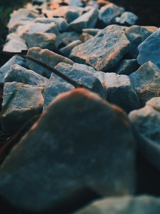 Close-up Of Rocks On Field Photograph by Arjun Nag / EyeEm