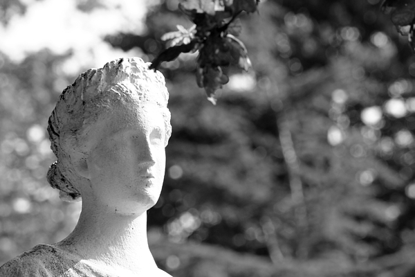Close-up Of Statue In Park Photograph by Pam Wright / EyeEm