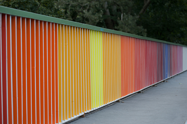 Colorful Wall On Sidewalk Against Trees Photograph by Piotr Hnatiuk / EyeEm