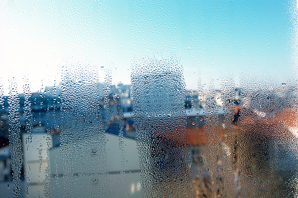 Condensation on window Photograph by James Hardy