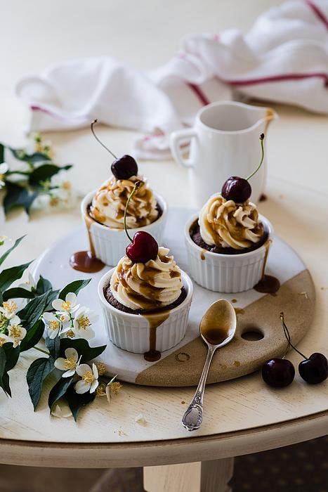 Cupcake Photograph by Verdina Anna