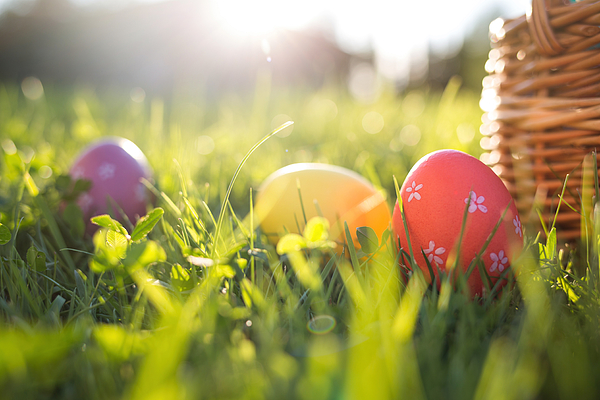 Easter eggs in a basket on the grass on a Sunny spring day close-up Photograph by Natalia Bodrova