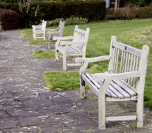 Empty wooden park benches Photograph by Lyn Holly Coorg