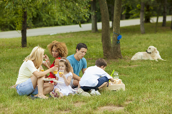 Families Enjoying Barbecue Outdoors Photograph by Vgajic