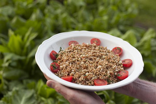 Farro Salad Antipasto Photograph by Jon Lovette