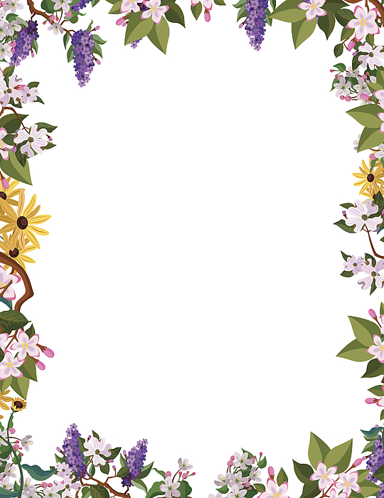 Flower Border Frame Drawing by Kathykonkle