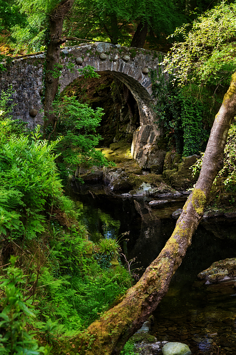 Foleys Bridge Across Shimna River In Tollymore Forest Park, Northern Ireland Photograph by Anna Gorin