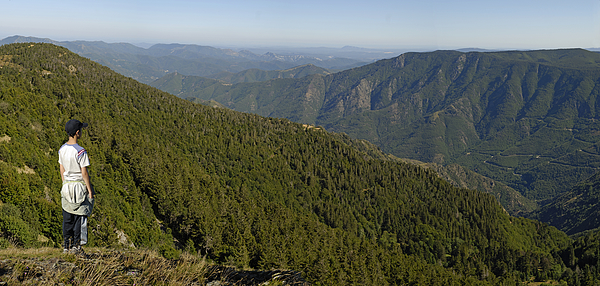 France, Mount Aigoual, Cevennes region, boy (12-13) looking at mountain range from Mount Aigoual Photograph by Sami Sarkis