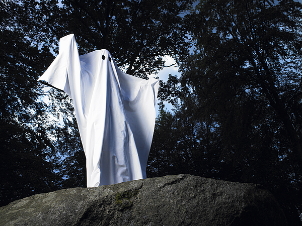Ghost made of sheets, standing on a rock Photograph by Ghislain & Marie David de Lossy