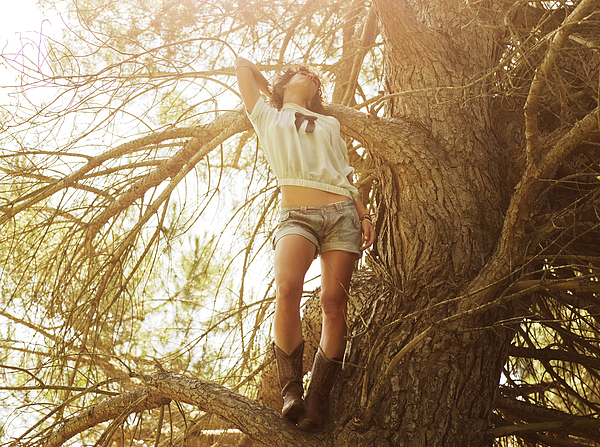 Girl in a tree Photograph by Devon Strong