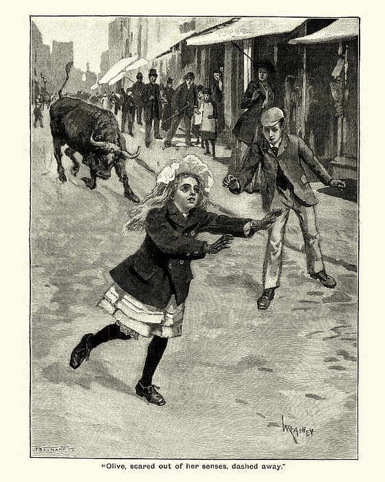 Girl running away from a charging bull, Victorian 19th Century Drawing by Duncan1890