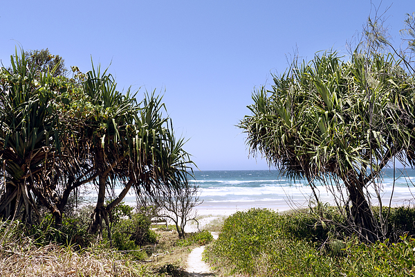 Gold Coast, Australia Photograph by Bernd Schunack