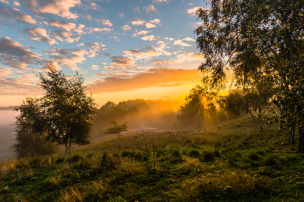 Golden Sunrise Photograph by William Mevissen