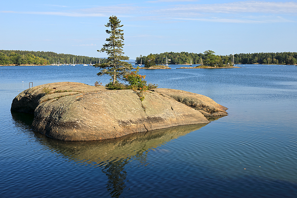Granite Rock Island With A Single Pine Tree In The Tranquil Bay Of Blue Hill Harbor Photograph by Rainer Grosskopf