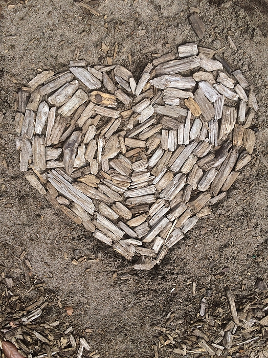 Heart made with firewood Photograph by Donna Schwartz / FOAP