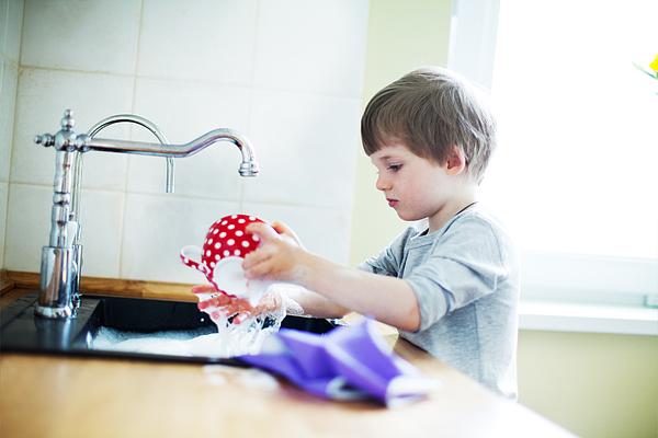 Housework Photograph by Yulkapopkova