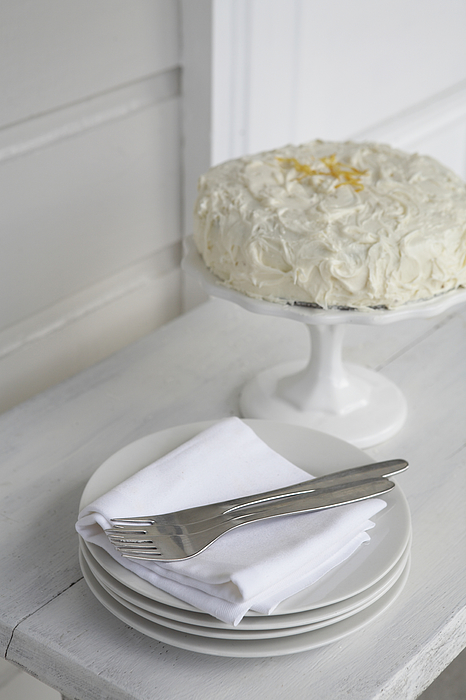 Iced cake with plates Photograph by Heidi Coppock-Beard