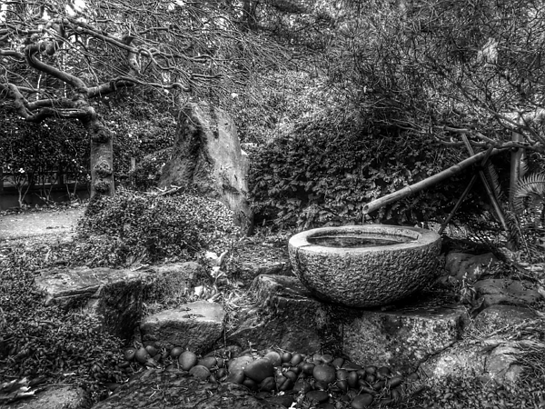 Japanese Bamboo Water Fountain Photograph by Matthew Mangus / EyeEm