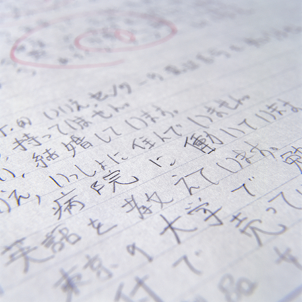 Japanese Homework Photograph by Ryan McVay