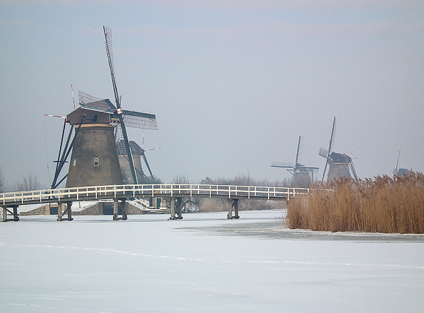 Kinderdijk in winter (The Netherlands) Photograph by Frans Sellies