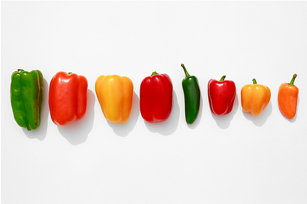 Line Of Bell Peppers On White Photograph by Jena Ardell