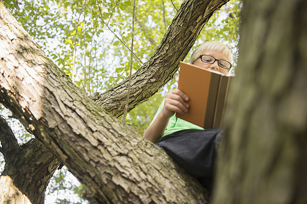 Low angle view of Caucasian boy reading in tree Photograph by JGI/Jamie Grill