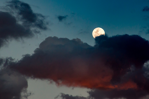 Low Angle View Of Moon In Sky Photograph by Richard Miles / EyeEm