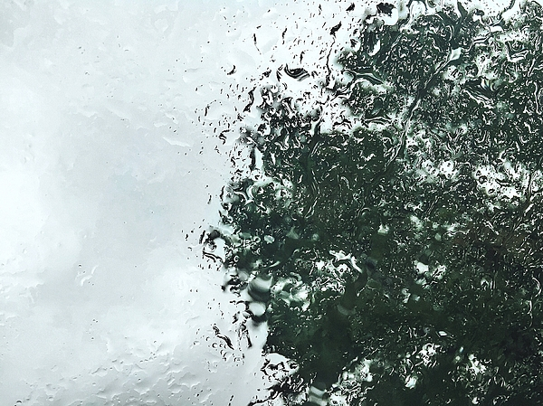 Low Angle View Of Tree Against Sky Seen Through Wet Glass During Monsoon Photograph by Patrick Walsh / EyeEm