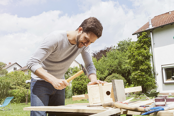 Man timbering a birdhouse Photograph by Westend61