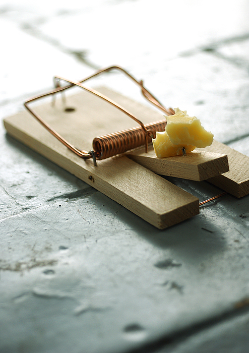 Mousetrap And Cheese. Photograph by Laurent Hamels