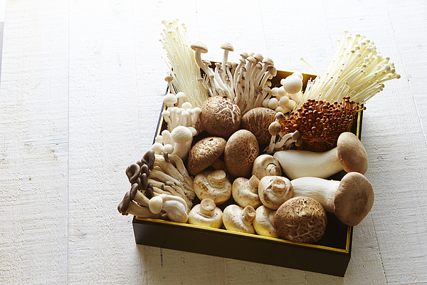 Mushrooms Photograph by Ma-no