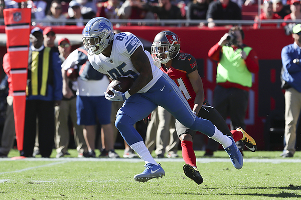 NFL: DEC 10 Lions at Buccaneers Photograph by Icon Sportswire