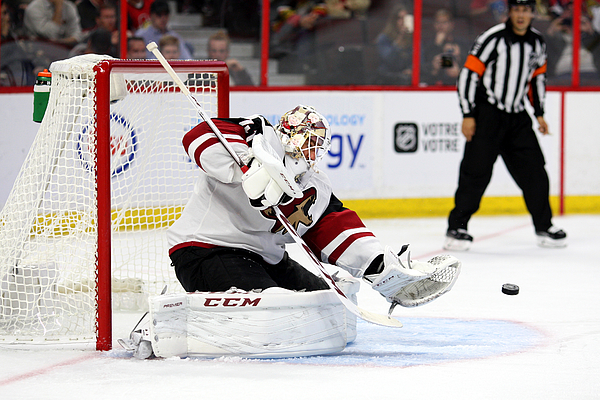 NHL: OCT 18 Coyotes at Senators Photograph by Icon Sportswire