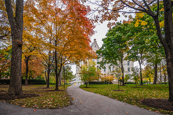 Northwestern University Campus Photograph by Eyfoto