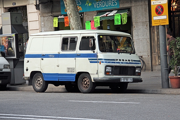 Old Pegaso J4 Van Stopped On The Street Photograph by Tramino