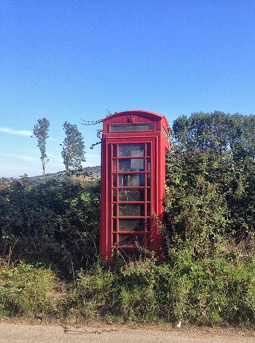 Old type of telephone box, overgrown Photograph by larigan - Patricia Hamilton